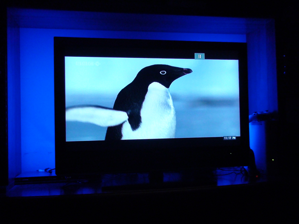 lumiere-bleue-television